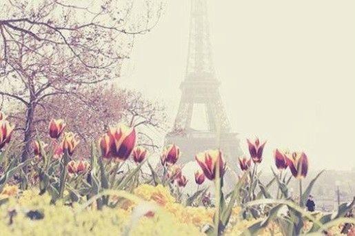Pourquoi si peu d'amour à Paris ?