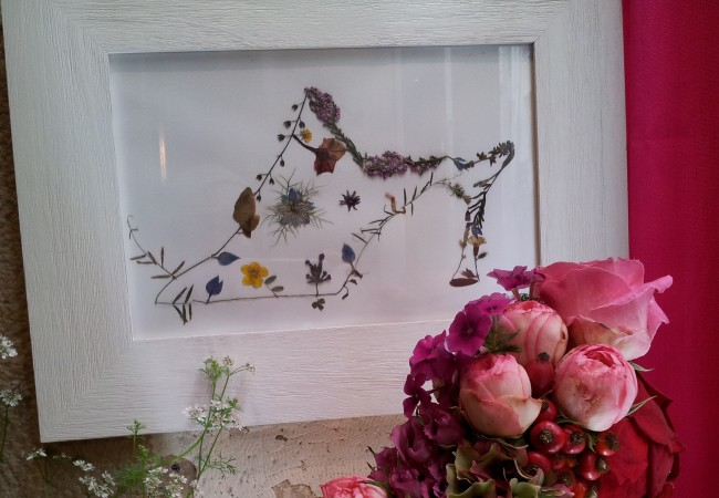 Une Fleur en liberté – Exposition – Mes Herbiers imaginaires d'Alexandra