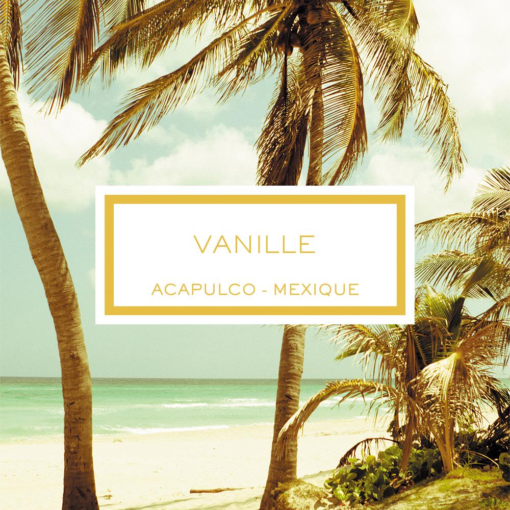 3332-vanilla-scented-candle-acapulco-mexico_1