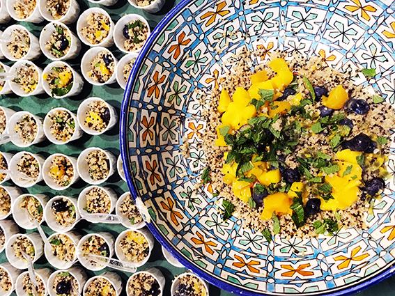 quinoa - quinola mothergrain