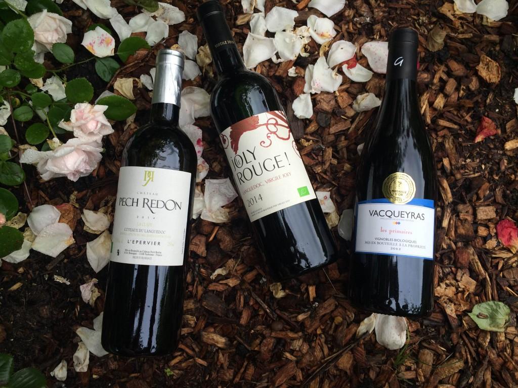 vins bio - oenologie - terroir français