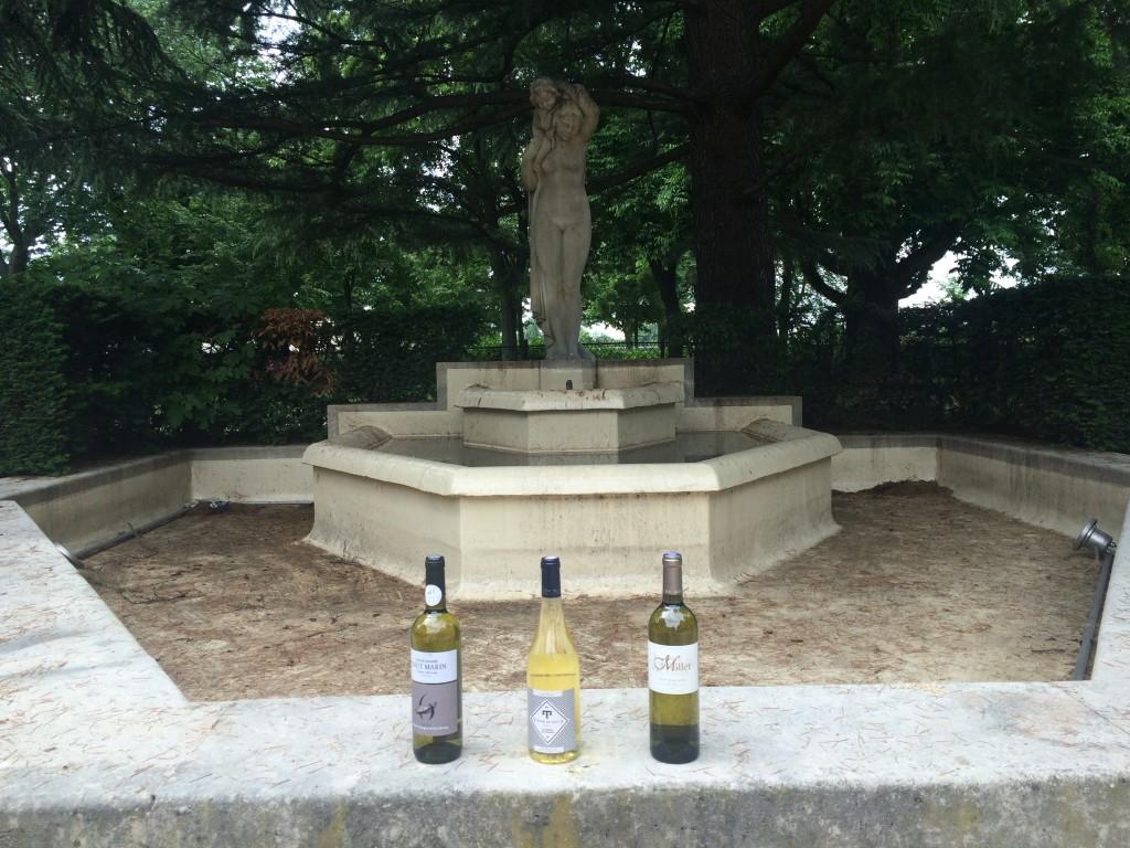 vins blancs - côte de gascogne