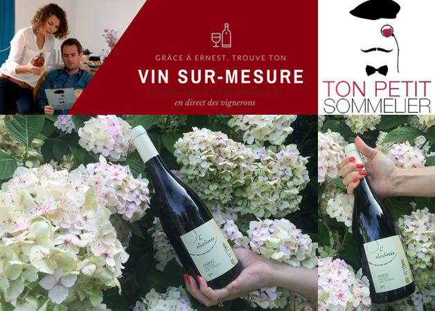 Ton Petit Sommelier – trouver son vin sur mesure – vignerons de talent