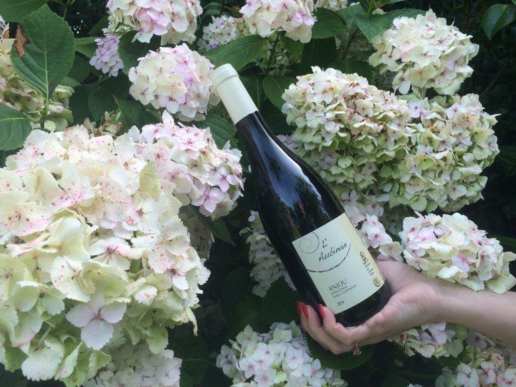 AOC Anjou, cuvée L'Aubinaie proposée par le Domaine Les Grandes Vignes