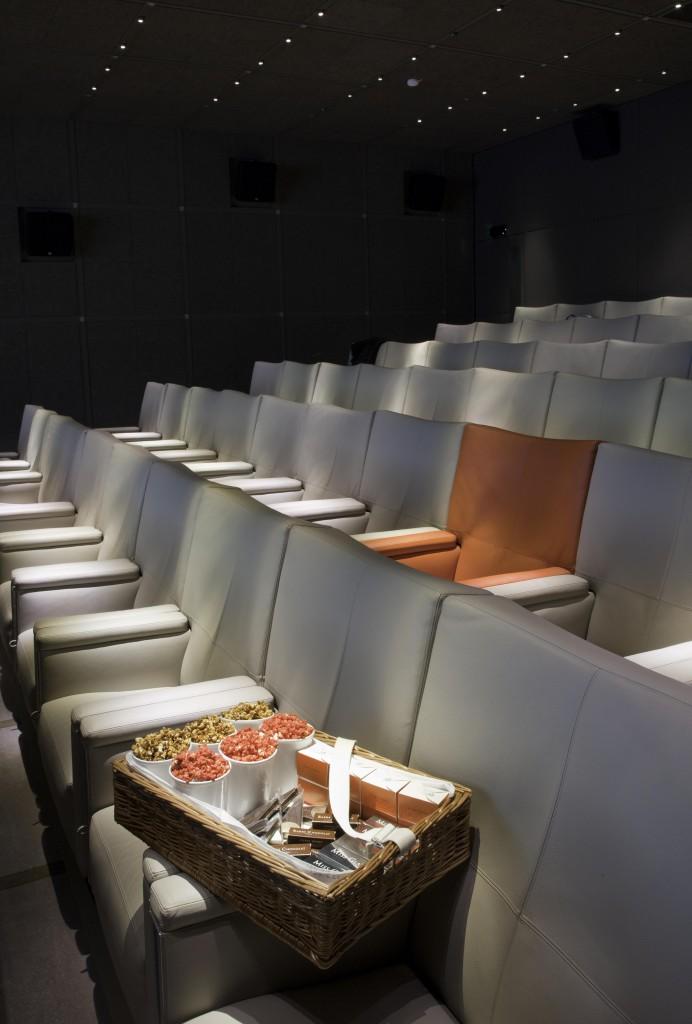 Le Royal Monceau Raffles Paris - Le Cinéma Katara 4(1)