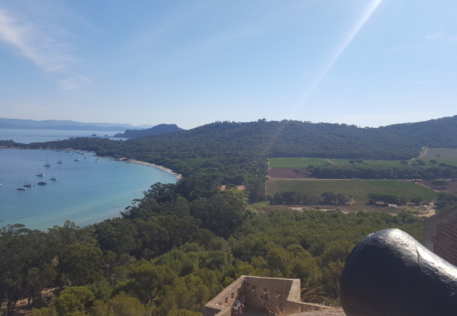 Les 40 ans de l'appellation Côtes-de-Provence – à la découverte de Porquerolles
