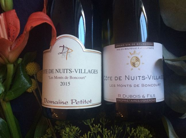 blog vin - vins de bourgogne - côte de nuits