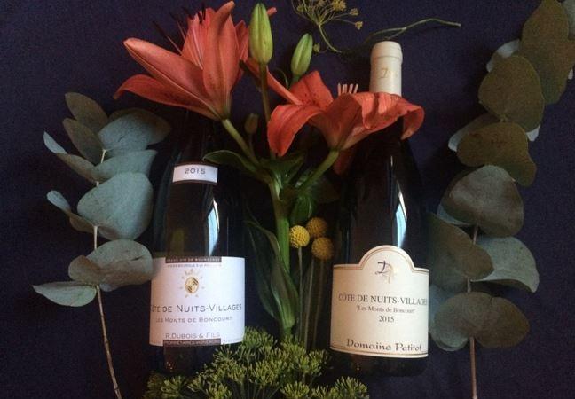 Sélection de vins – Côte de Nuits-Villages – Les Monts de Boncourt