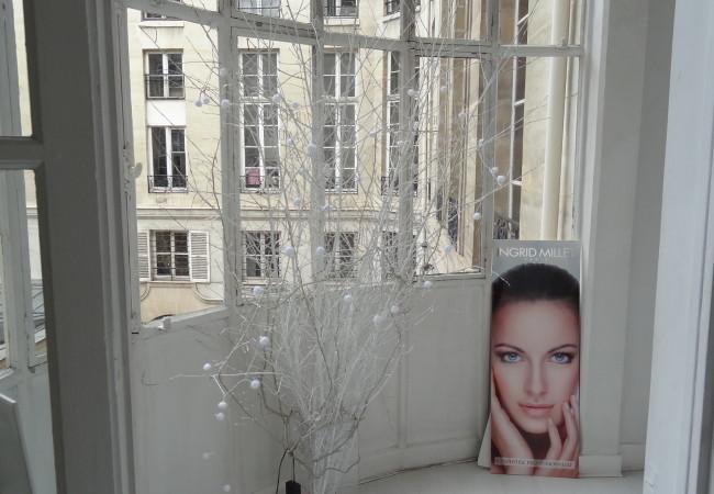 Ingrid Millet – la méthode Ahimsa débarque à Paris – massages extraordinaires