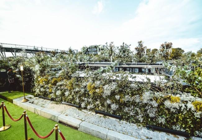 La Maison St Germain – cocktail floral sur une péniche transformée en jardin