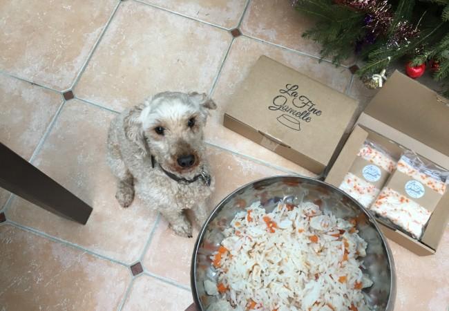 La Fine Gamelle – plats sur-mesure pour chiens urbains