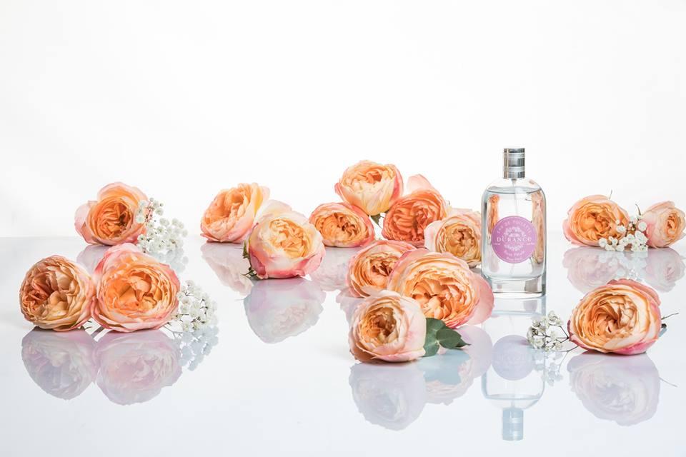 Durance - nouveaux parfums Les Eternelles - rose de grasse