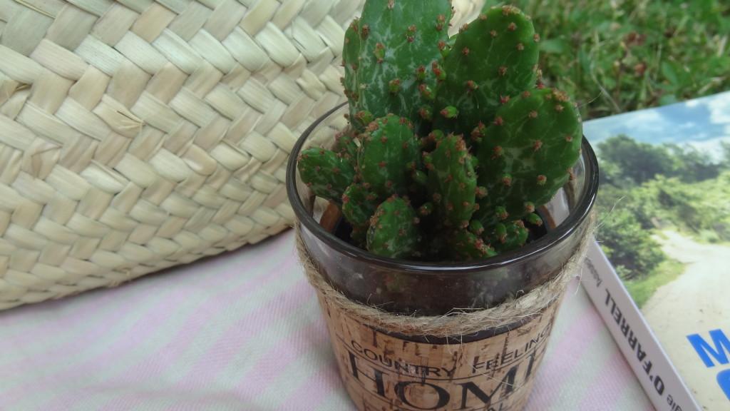 Kadosûr - coffrets cadeaux - produits plaisir - apéros d'été