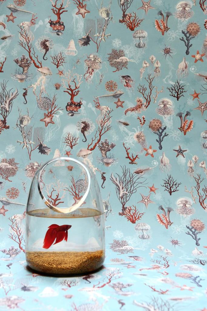 Jean Paul Gaultier papiers peints