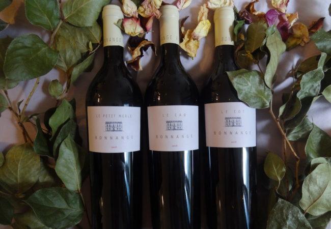 Le Château Bonnange et son exquise gamme mono-cépages – Bordeaux