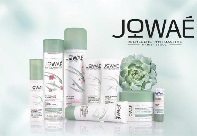 Jowaé – rituels de soins franco-coréens – recherche phytoactive