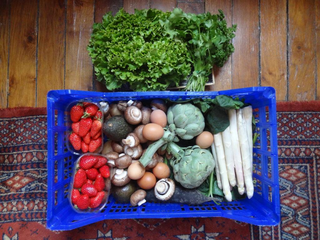 Bio Sain Vite - livraison de paniers de fruits et légumes Bio et français