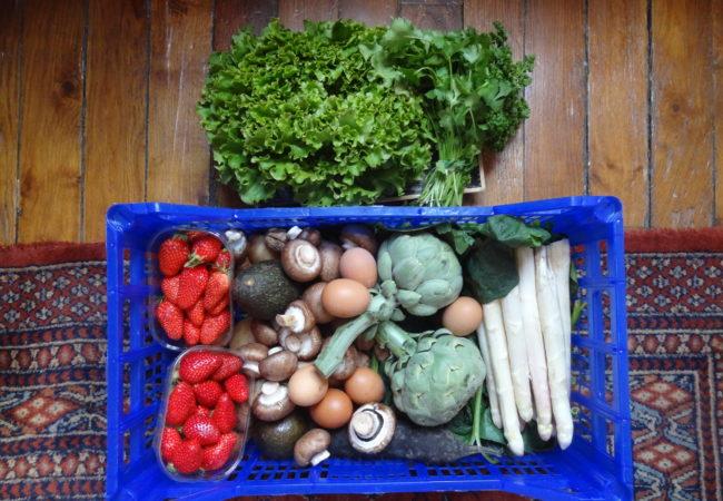 Bio Sain Vite – livraison de paniers de fruits et légumes Bio français